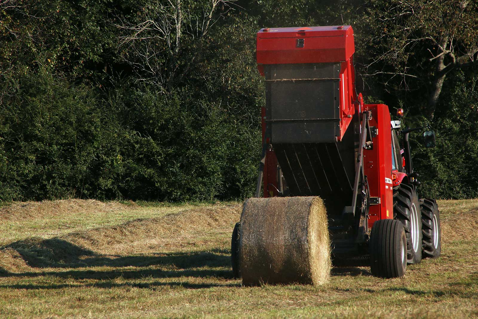 New and used Massey Ferguson 2900 Series round balers for sale at Hanlon Ag Centre in Lethbridge, Alberta, Canada. Compare model MF 2946 and MF 2946A 4x6 balers or MF 2956 and MF 2956A 5x6 balers. For hay producers, livestock and dairy farmers. 5x6 baler